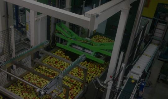 ObstKroepfl